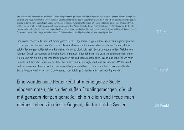 Designreport_Schleifer_Alexandra23