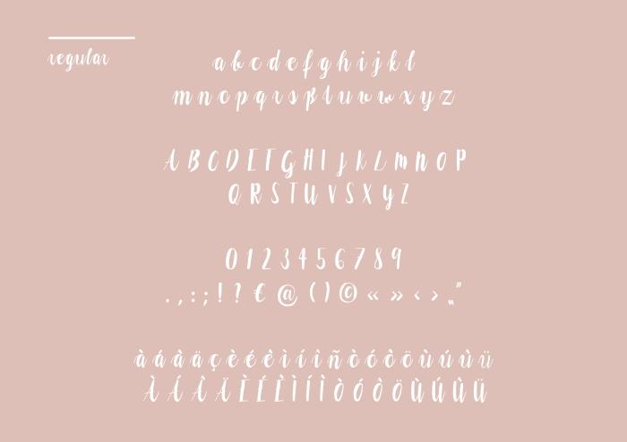 schleifer_typedesign_20162