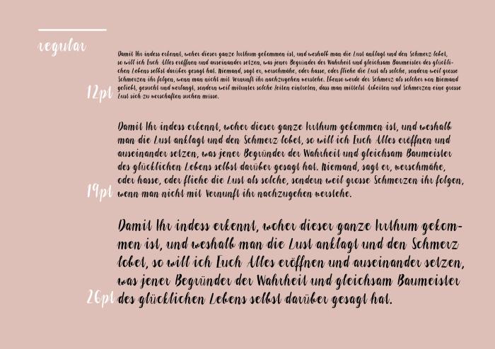 schleifer_typedesign_220161